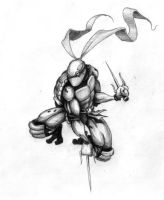 Raphael - Pencil Sketch OLD by rageous-us