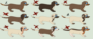 free Wire haired dachshunds updated OPEN by SamPanther