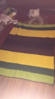 Sunflower Blanket - SOLD by DammitMax