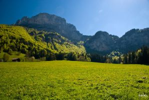 Chartreuse, le matin by rdalpes
