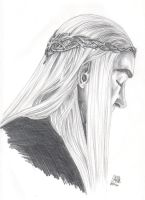 Thranduil by SixthIllusion