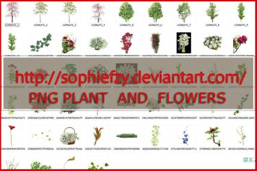 PNG PLANT AND FLOWERS by Sophie-Y