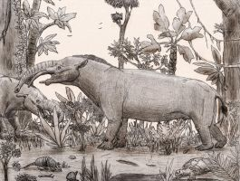 Granastrapotherium by Zimices