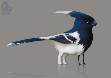 Auction: Magpie Tanagerling by nybird