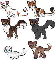 What Happened To Them (medcat edition) by jigsocks