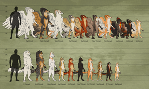 Tribes of TeaFeathers Size Chart by KatieHofgard