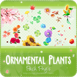 Pack Png's #3 Ornamental Plants by ZttaR