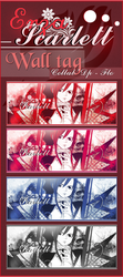 Erza Collab by Darkprincess92