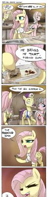 Pet's Meal Cooking Contest by FidzFox