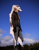Full White Wolf Skin Headdress by NaturePunk