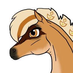 7612 AS Freya by AhernStables