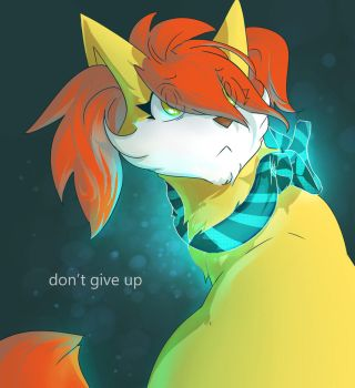 Don't Give Up by MamaTad