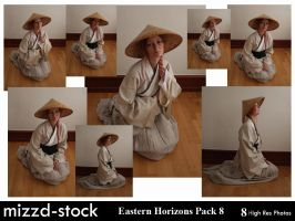 Eastern Horizons Pack 8 by mizzd-stock