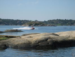 SeaDoo Power by wellgraphic