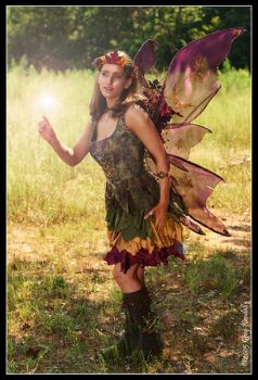 Fall Fairy Costume 2 by sithvixen