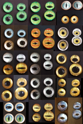 Recent Eye Examples by DreamVisionCreations
