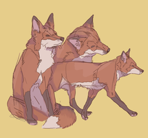 foxes by uhnyla