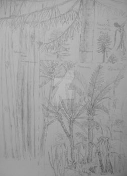 La Matilde Formation  flora sketches by Lucas-Attwell