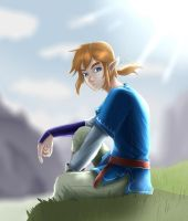 The Legend of Zelda: Breath of the Wild LINK by MiToLO04