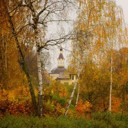 Church in woods by Koobassoff