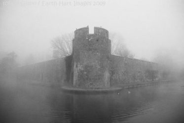 Out of the Fog B_W by Earth-Hart