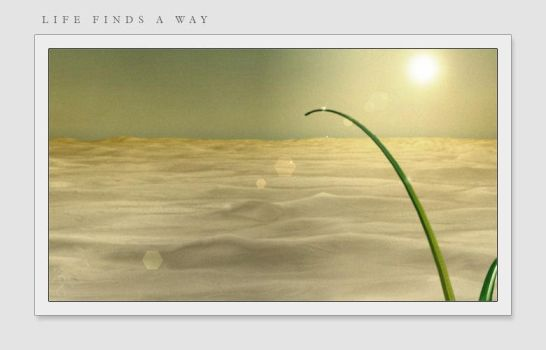 Life finds a way by bloederbauer