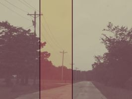 Rosy Roadway by ignotism