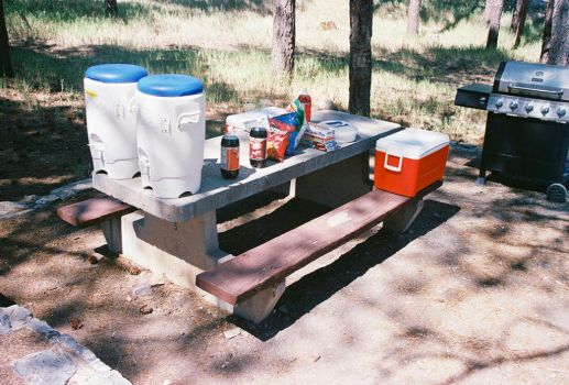 Food and Drink Table #1 by Texas1964