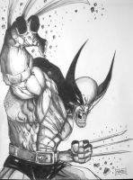Wolverine by Xpendable