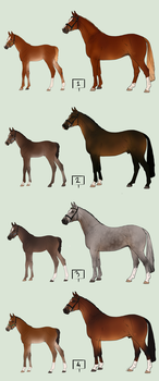 For Sale - Hano Foals with Lineage Closed by Lone-Onyx-Stardust