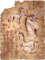 Ancient Manuscript of Unicorns by tursiart