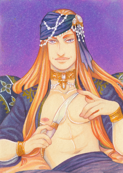 The Harem Guard ACEO by Anoki-Doll