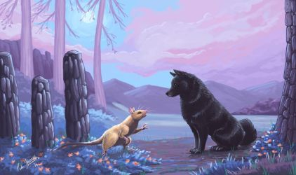 Schipperke in the purple night garden. by chaypeta