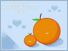 WALLPAPER: Mandarin Protection by ember-snow