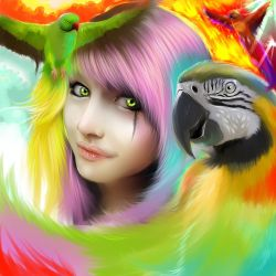 parrots- color of life by ryky