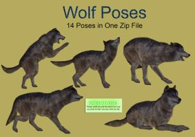 Wolf Poses PNG Stock Pack by Roy3D