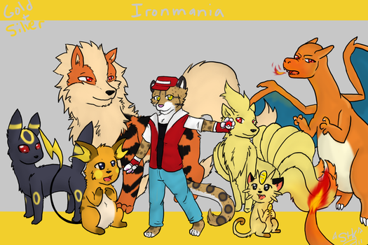 My Pokemon Team by Ironmania2003