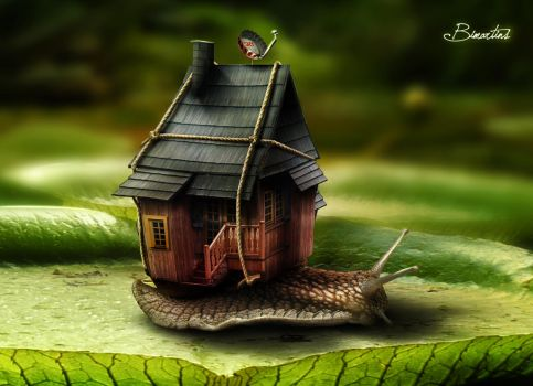 The tenant by Bimartins