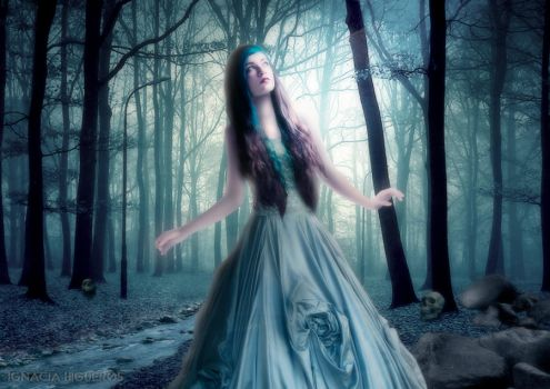 Enchanted forest by IgnaciaH
