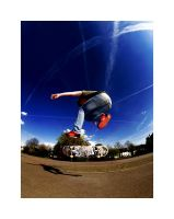 Fisheye Skate by InfernalFear