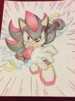 Shadow the Hedgehog 2 (completed) by iloveraphaeltmnt