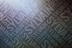 Typographie : Sylvain by near43