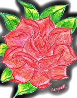 Pixlr'd: Attempt at Drawing a Rose by Roxyielle