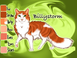 Billystorm of SkyClan - After the Flood by Jayie-The-Hufflepuff