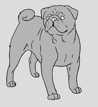 Dog Template - Pug by NaruFreak123-Bases