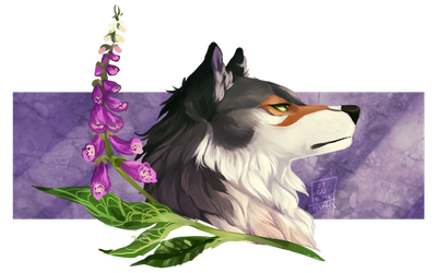 lilac veil | comm | WoLF by Copperhaven