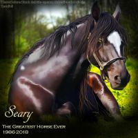 Seary by MClaireB