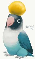 Pollito by Siplick
