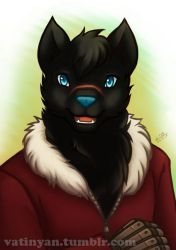 Commission - Drake by Vatina