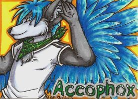 Emerg Commission - Acco Badge by Temrin